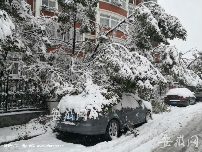 安徽等多地区突降大雪
