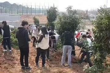 瑞联节能植树节植树活动